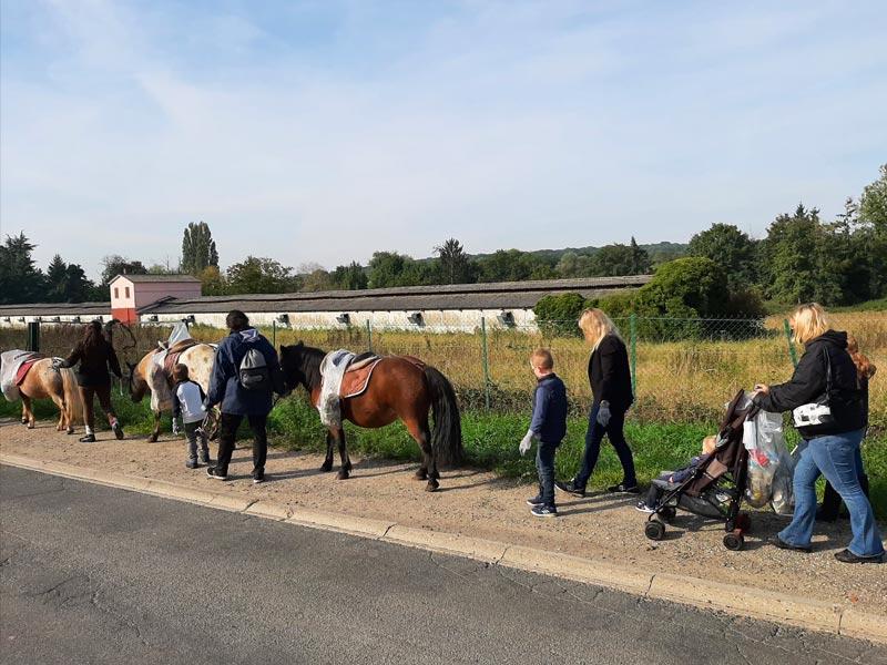 ramassage-dechets-poney